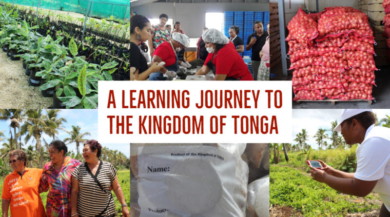 LEARNING FROM THE KINGDOM OF TONGA: NEW Innov4AgPacific REPORT
