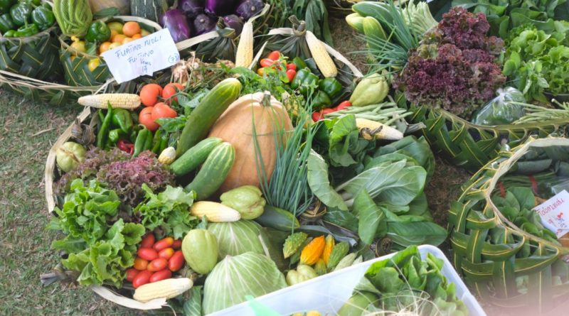 Pacific Week of Agriculture in Review – Part 4: Working together to advance Pacific agri-food value chain development